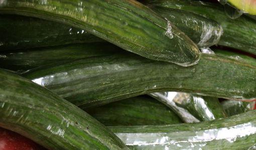 Picture of Cucumber