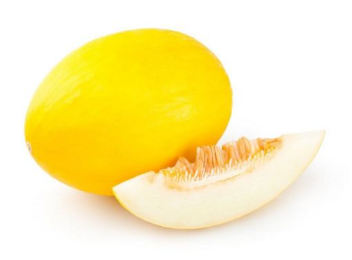 Picture of Melon canary